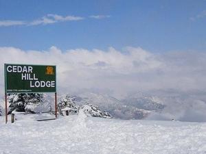 Cedar Hill Lodge