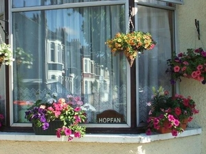 Hopfan Bed And Breakfast