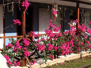 Hostel Petero Atamu