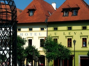 Hotel U Leva