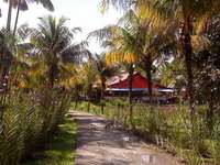 Mahatu Leticia Hostel