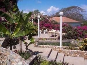 Mango Tree Cottage
