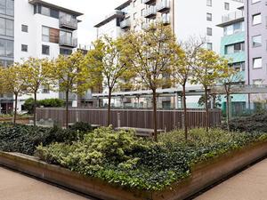 Modern Zone 2 London