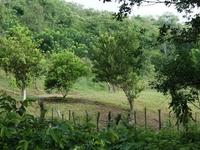 Mokanas Hostel and Camp Ground