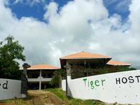 Naked Tiger Hostel