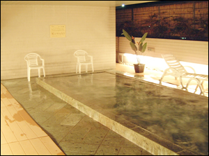 Sauna & Capsule Hotel Hokuo