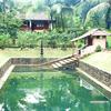 Soma Birds Lagoon