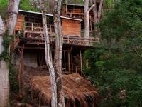 Treehouse Poste Rojo