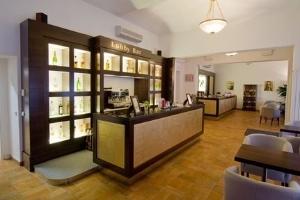 Hotel Praga1