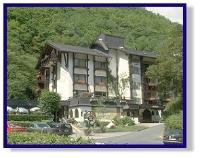 Silence Hotel Weissmuhle