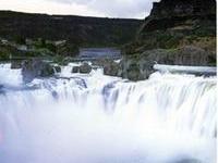 Super 8 Twin Falls