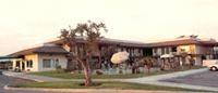 Super 8 Lindsay Olive Tree