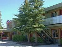 Moose Creek Inn