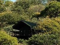Eagle Tented Lodge & Spa Etosha