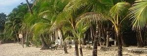Coco Grove Beach Resort