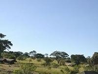 Lemala Mara Camp