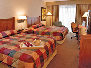 Delta Kitchener Waterloo Hotel
