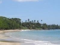 Tobago Island Suites