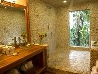 Machaca Hill Rainforest Canopy