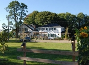 Great Tree Inn And Stables