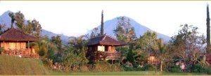 Puri Lumbung Cottages