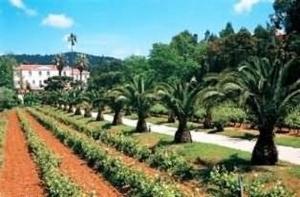 Holiday Villa Beach Resort & Spa Cherating