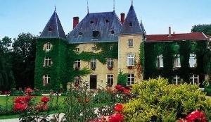 Chateau D Adomenil