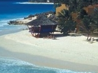 Divi Tamarijn Aruba Beach Reso