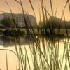 Sea Palms Golf Resort
