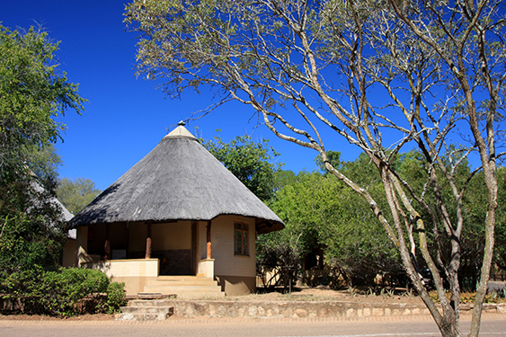 Fully Inclusive Standard Safari Experience in the Kruger Park Photos