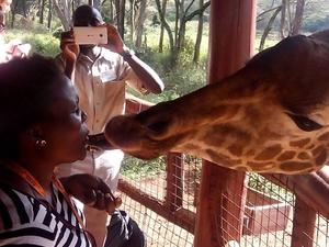 The Great Escape in Kenya Fotos