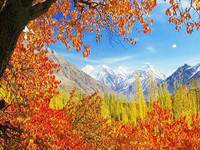 Autumn Tour to Hunza Valley, Pakistan
