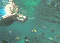 Snorkeli4 Jpg Nggid0230 Ngg0dyn 215x145x100 00f0w010c011r110f110r010t010