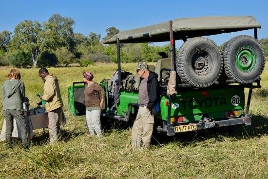 7 Days Best of Botswana Safari Photos