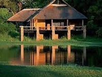 Ultimate African Safari Experience