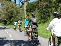 Park E Bike Sintra Guided Family Tour