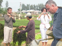 Da Nang - Hoi An - Tra Que Herb Village - Farming