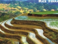Rice Terraces Ecotour
