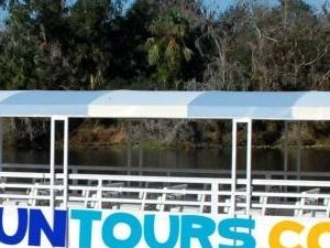 Dolphin Tours Photos