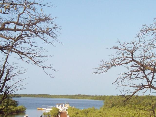Step in Senegal Photos