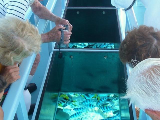 Glass Bottom Boat Photos