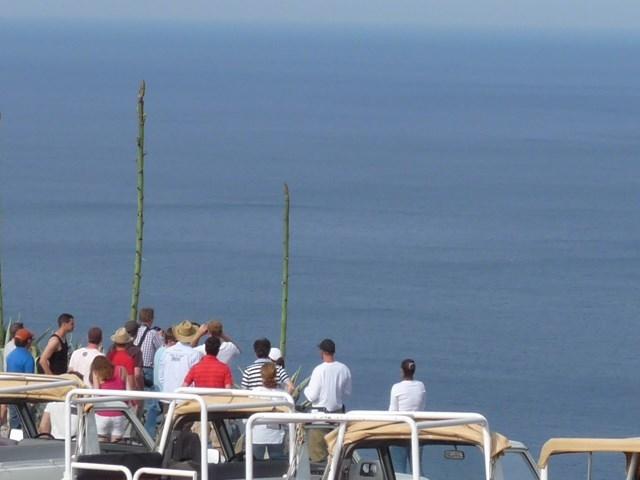Ibiza Jeep Safari - Discover the Hidden Secrets Photos