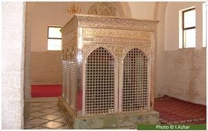 One Day Tour (Islamic Tour) Photos