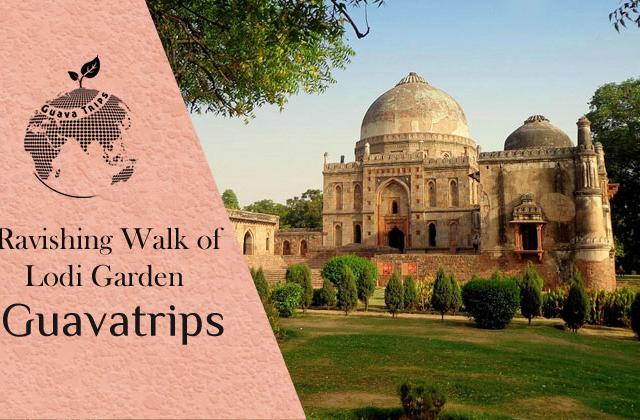 Ravishing Walk of Lodi Garden Photos