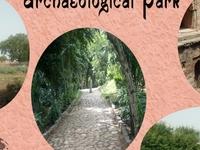Blissful Walk Through the Mehrauli Archaeological Park