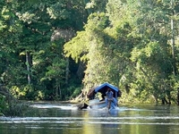 Amazon Explorer Iquitos Peru Expeditions Tours Adventure, Navigating Rivers