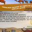 Jaisalmer 02 Nights Package