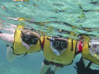 People At Snorkel