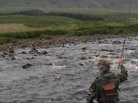 River Tees Wild Brown Trout Wilderness Fly Fishing Experience