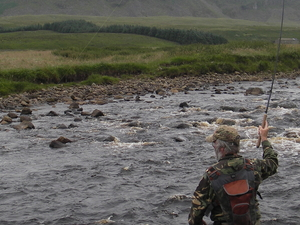 River Tees Wild Brown Trout Wilderness Fly Fishing Experience Fotos